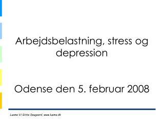Arbejdsbelastning, stress og depression Odense den 5. februar 2008