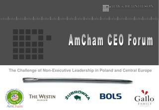 The Challenge of Non-Executive Leadership in Poland and Central Europe