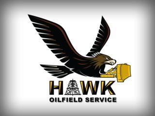 HAWK OILFIELD ORGANIZATIONAL CHART