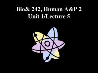 Bio& 242, Human A&P 2 Unit 1/Lecture 5