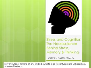 Stress and  Cognition  The Neuroscience Behind Stress, Memory &  Thinking