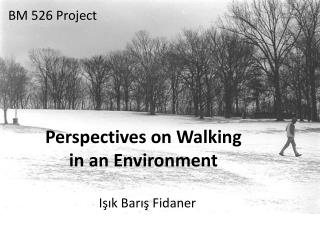 Perspectives on Walking in an Environment