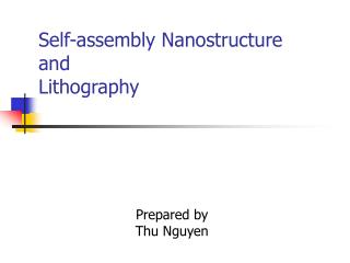 Self-assembly Nanostructure  and Lithography
