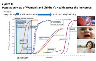 Figure 1 : Population  view of Women's and Children's Health across the life course.