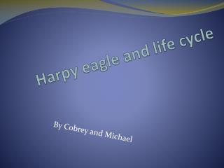 Harpy eagle and life cycle