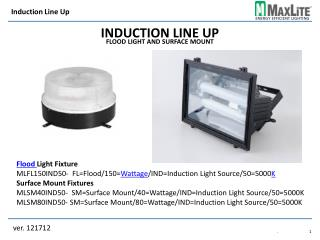 Induction Line Up Flood Light and Surface Mount