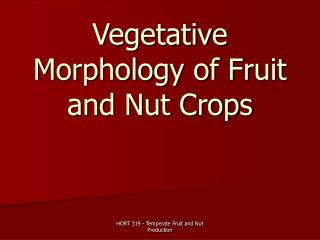 Vegetative Morphology of Fruit and Nut Crops