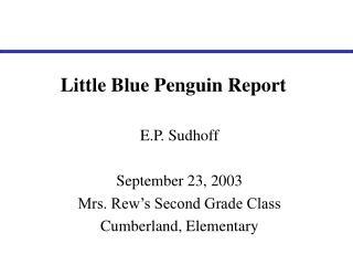 Little Blue Penguin Report