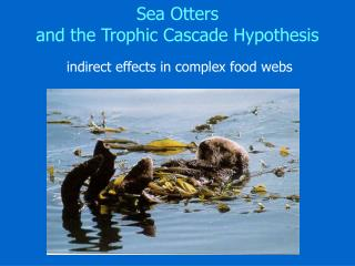 Sea Otters  and the Trophic Cascade Hypothesis