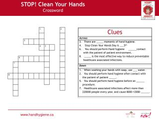 STOP! Clean Your Hands Crossword