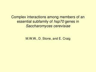 M.W.W., D. Stone, and E. Craig