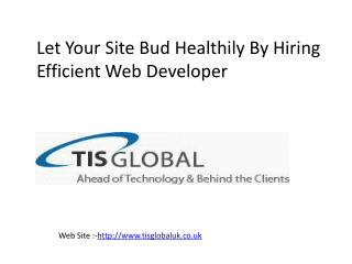 Let Your Site Bud Healthily By Hiring Efficient Web Developer