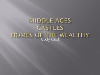 Middle Ages  Castles Homes of the Wealthy