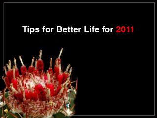 Tips for Better Life for  2011