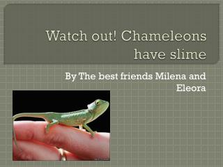 Watch out! Chameleons  have slime