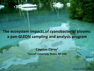 The ecosystem impacts of cyanobacterial blooms:  a pan-GLEON sampling and analysis program