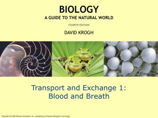 Transport and Exchange 1: Blood and Breath