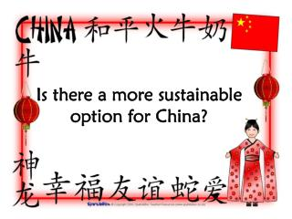 Is there a more sustainable option for China?