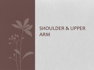 Shoulder & Upper Arm
