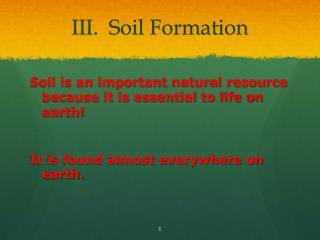 III.  Soil Formation