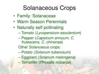 Solanaceous Crops