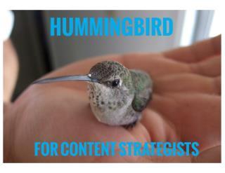 hummingbird presentation