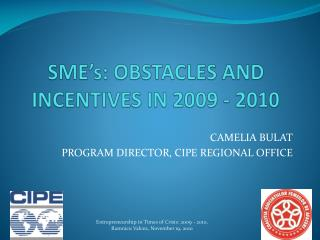 SME's:  OBSTACLES AND INCENTIVES  IN 2009 - 2010