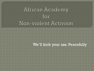 African Academy  for  Non-violent Activism
