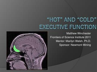 """Hot"" and ""Cold"" executive Function"