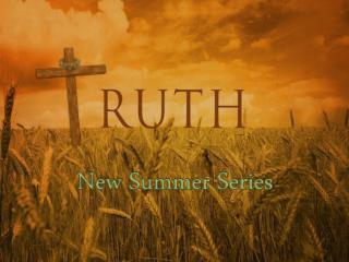 New Summer  Series