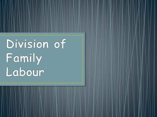 Division of Family Labour