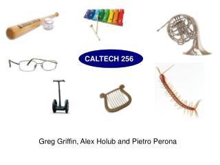 CALTECH 256