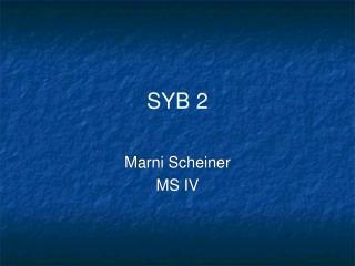 SYB 2