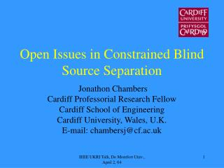 Open Issues in Constrained Blind Source Separation