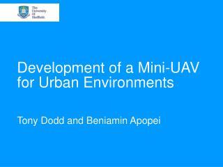 Development of a Mini-UAV for Urban Environments