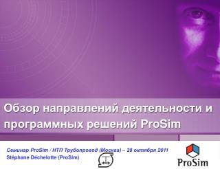 Обзор направлений деятельности и программных решений  ProSim