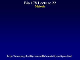 Bio 178 Lecture 22