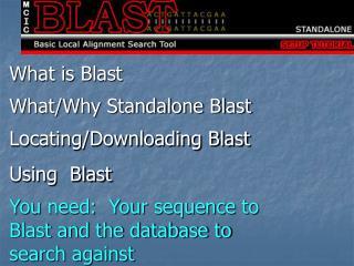 What is Blast