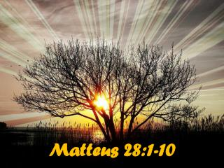 Matteus 28:1-10