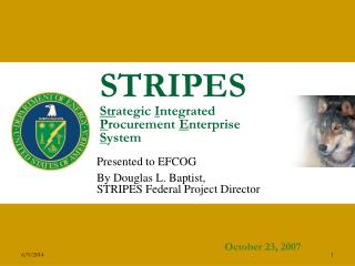 STRIPES Strategic Integrated Procurement Enterprise System