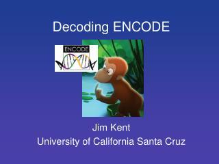 Decoding ENCODE