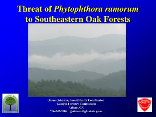 Threat of  Phytophthora ramorum  to Southeastern Oak Forests