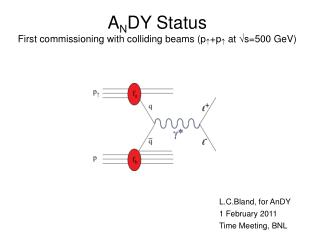 A N DY Status First commissioning with colliding beams (p  +p   at  s=500 GeV)