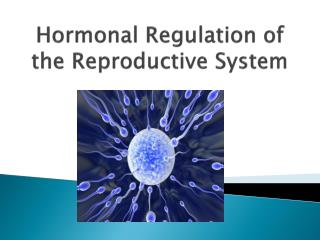 Hormonal Regulation of the Reproductive System
