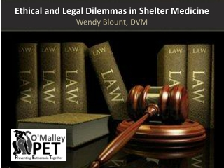Medical Special Needs Sheltering