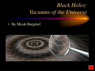 Black Holes:  Vacuums of the Universe