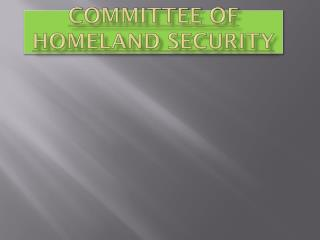 Committee of Homeland Security