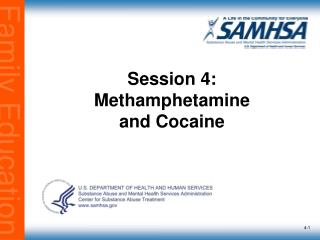 Session 4: Methamphetamine  and Cocaine