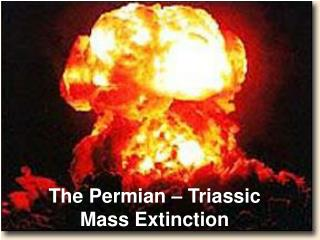 The Permian – Triassic Mass Extinction
