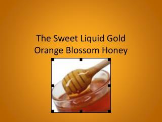 The Sweet Liquid Gold Orange Blossom Honey